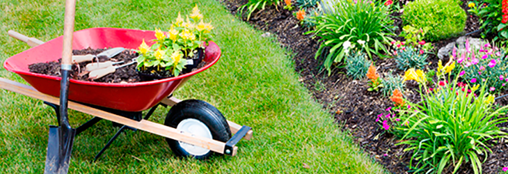 landscaping insurance in ohio