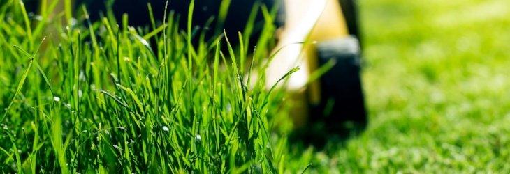 Ohio landscaping insurance